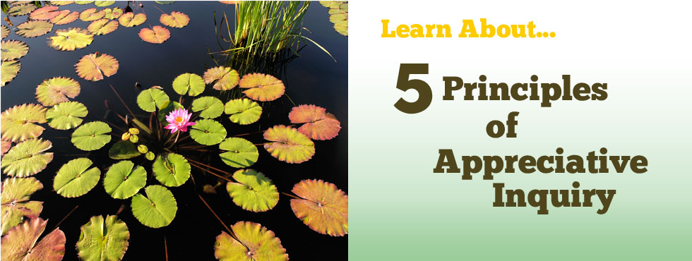 Learn About 5 Principles of Appreciative Inquiry